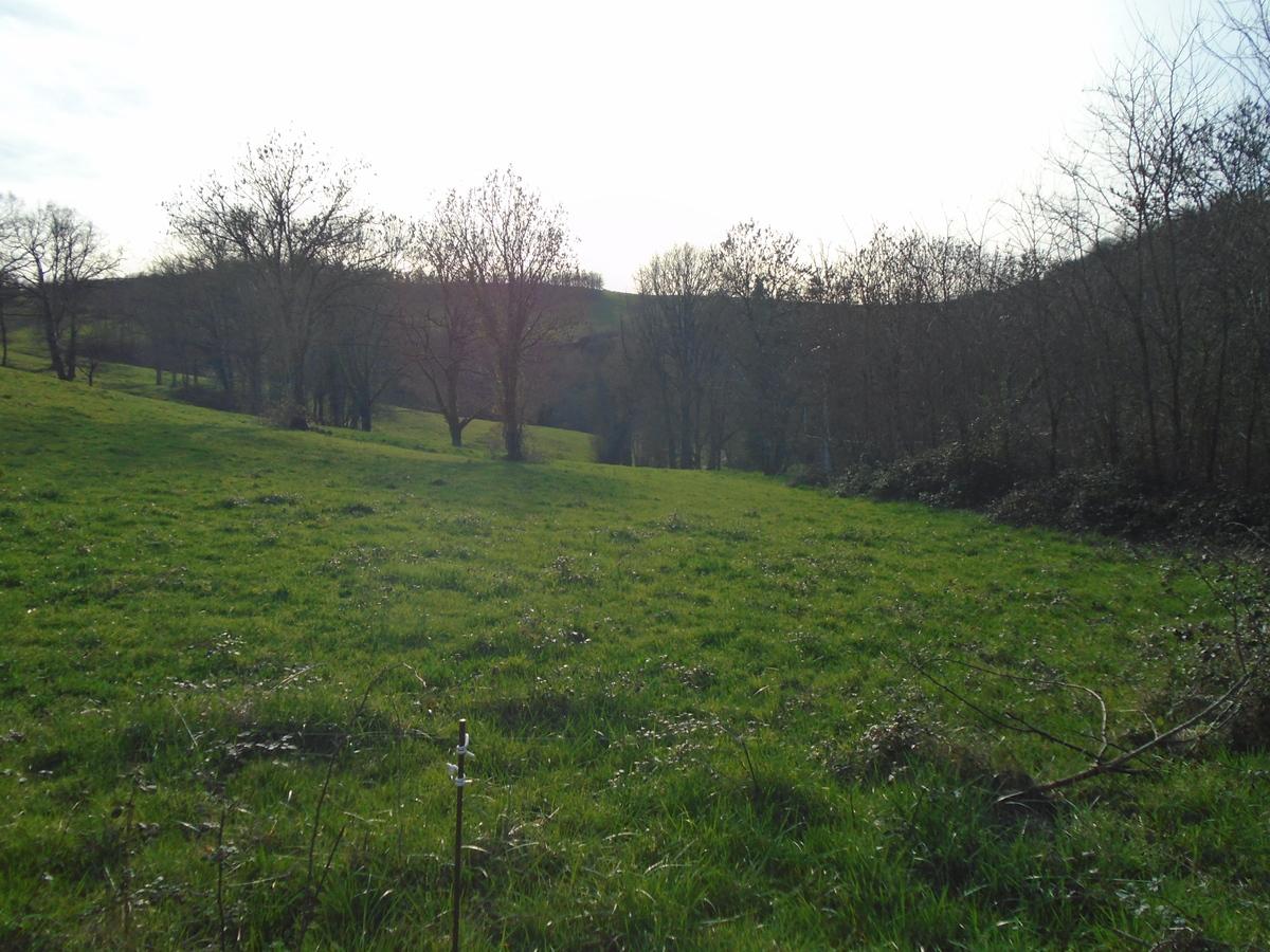 Land - Auzits